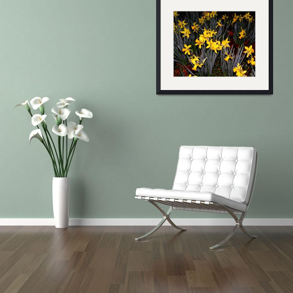 """""""Nighttime Daffodils""""  (2010) by young-eclectic-emporium"""