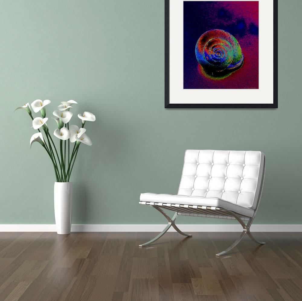 """""""The Painted Shell&quot  (2011) by Kimmary"""
