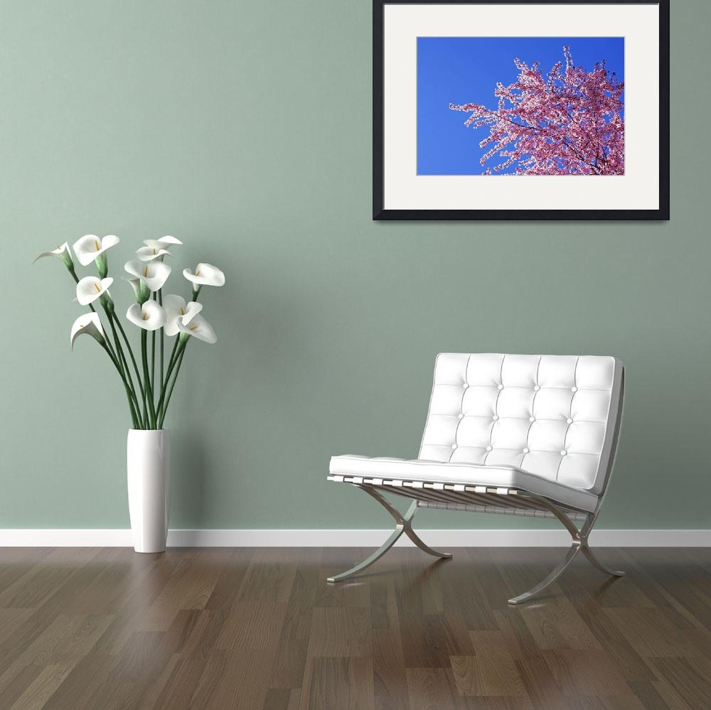 """""""Tree Blossoms Art Prints Spring Pink Flowers Blue&quot  (2014) by BasleeTroutman"""
