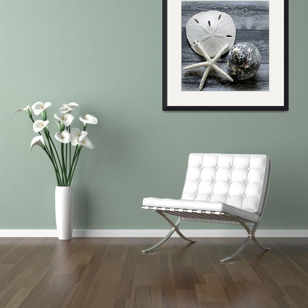 """""""ORL-5608-1 Seashells on Wood&quot  by Aneri"""