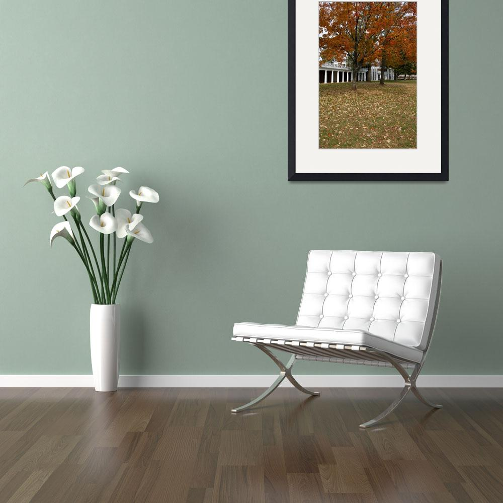 """Fall Leaves on The Lawn, University of Virginia, U&quot  (2003) by fineartphoto"