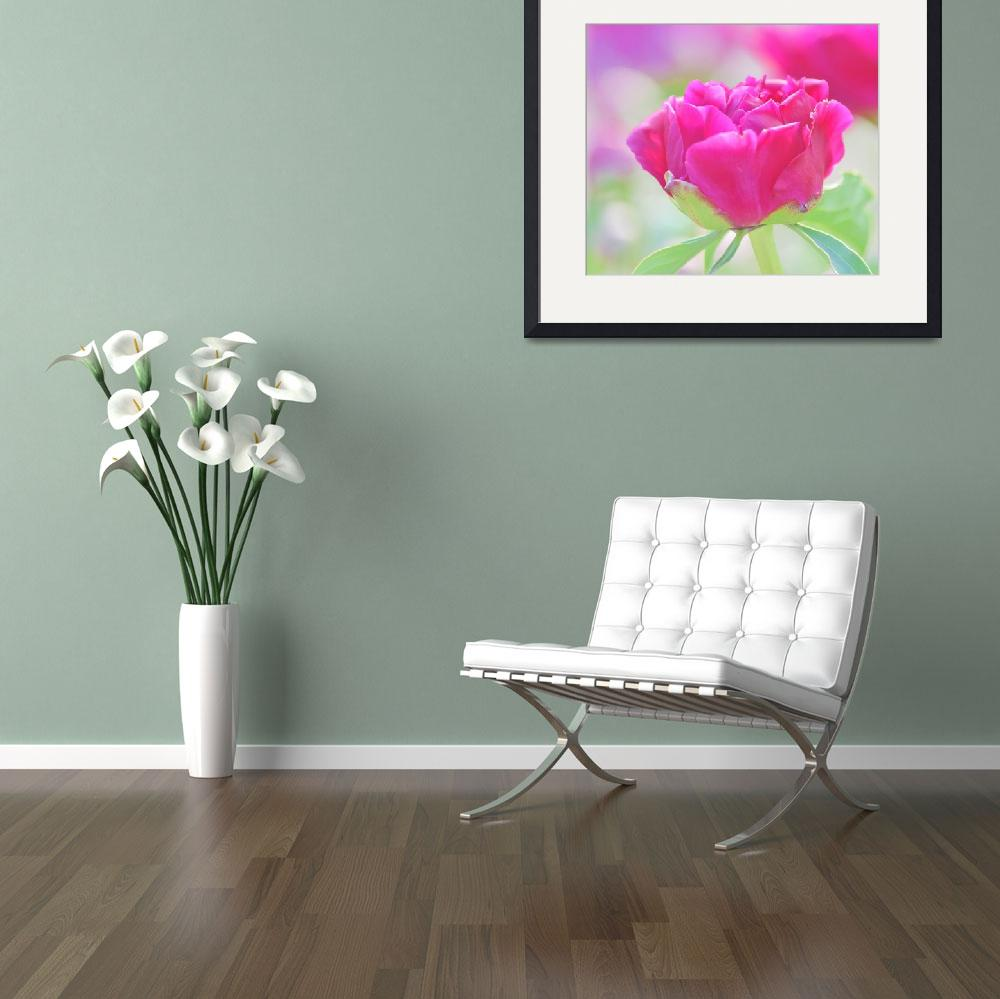 """Young Peony&quot  (2014) by joanhan"