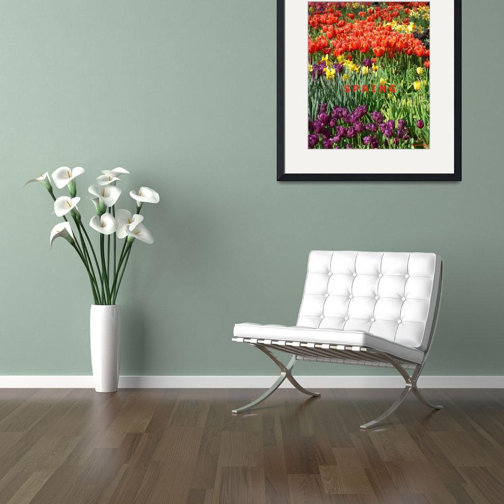 """""""Spring poster&quot  (2008) by rayjacque"""