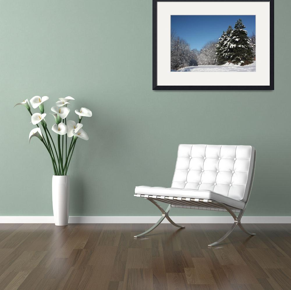 """""""White winter 2&quot  (2009) by Albertphoto"""