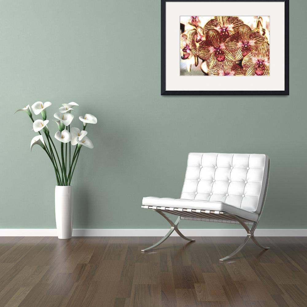 """""""Detail Drawing  of Yellow Red Orchids&quot  (2012) by WallArtDeco"""