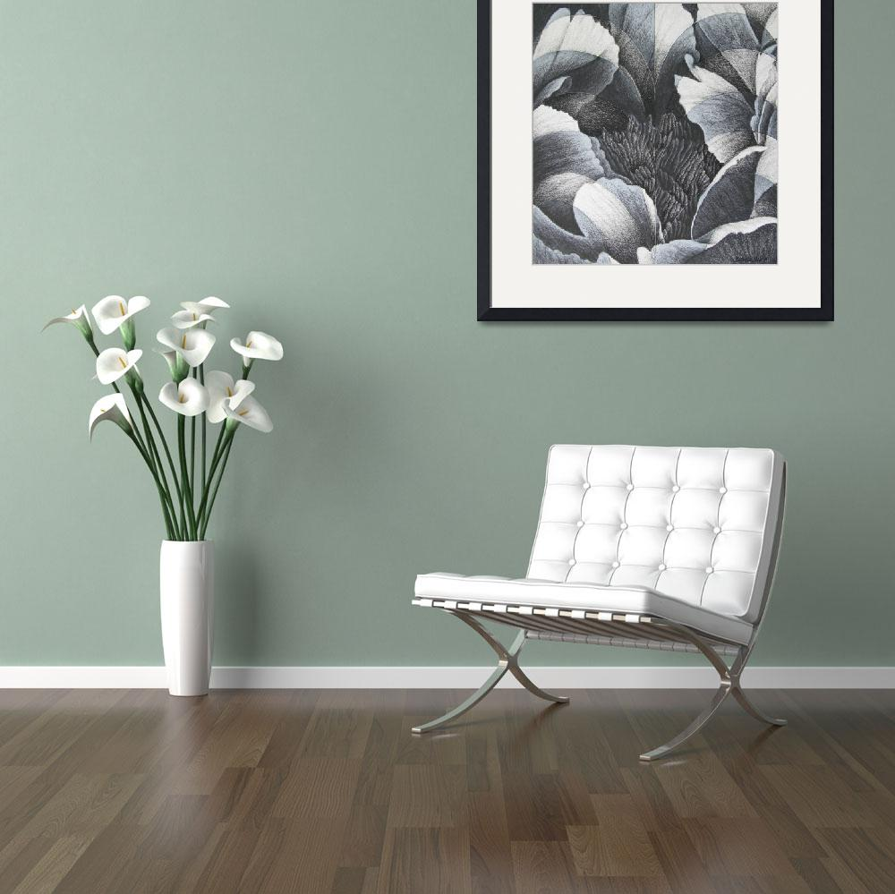 """""""Peony - black and white study&quot  by RoNel"""
