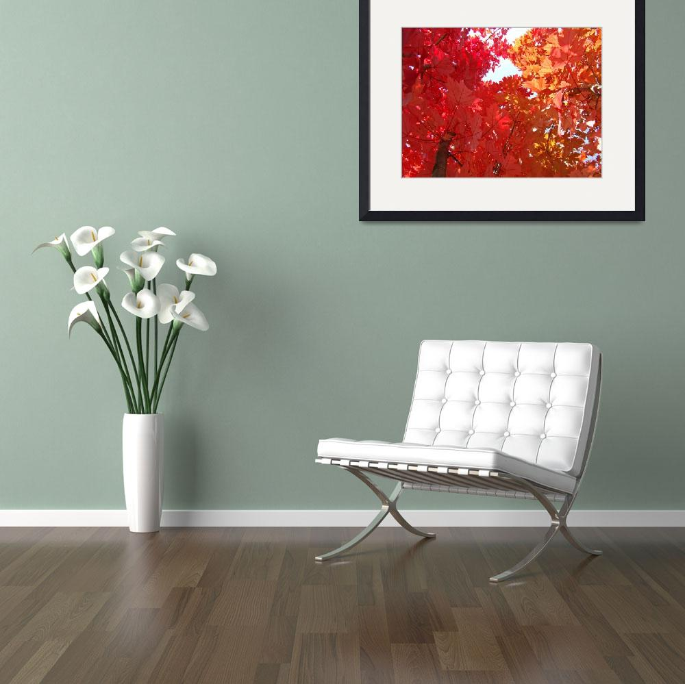 """""""FALL TREES Autumn Art Red Orange Leaves Landscape""""  (2009) by BasleeTroutman"""