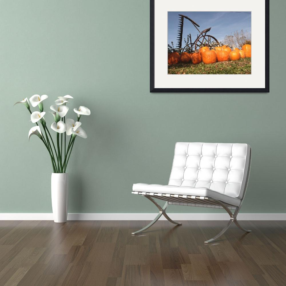 """""""Pumpkin Patch&quot  (2005) by DuffyPhoto"""
