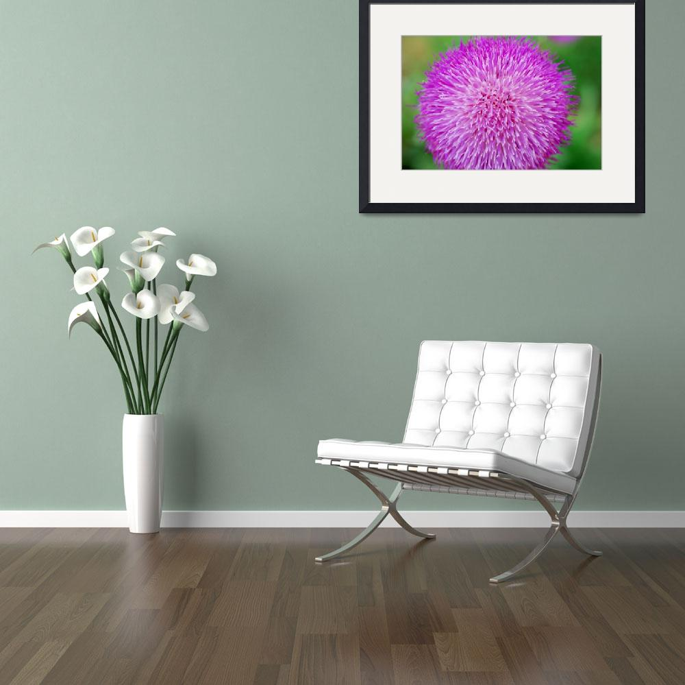 """""""purple fuzz ball with ants""""  (2009) by imagineit"""