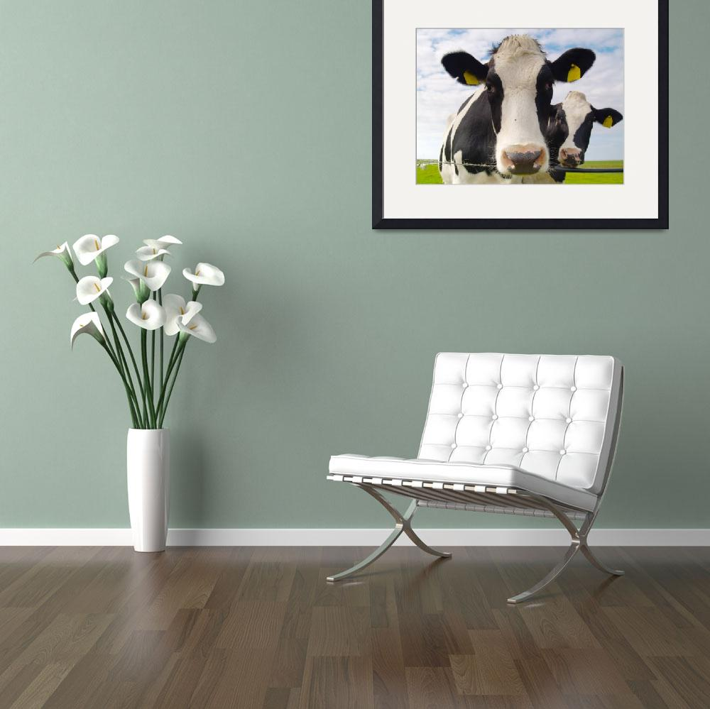 """two cows&quot  (2009) by derausdo"