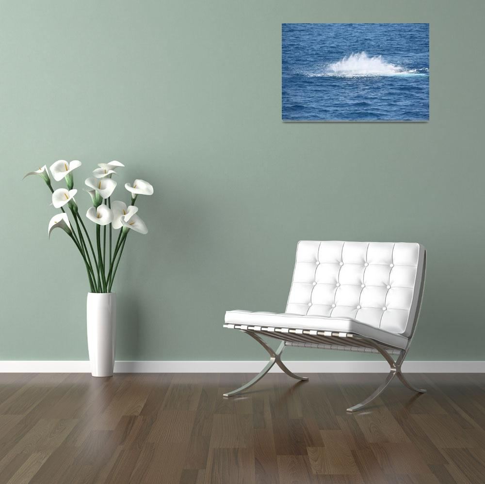 """""""NaP_ Whale Watching119&quot  by nevilleprosser"""