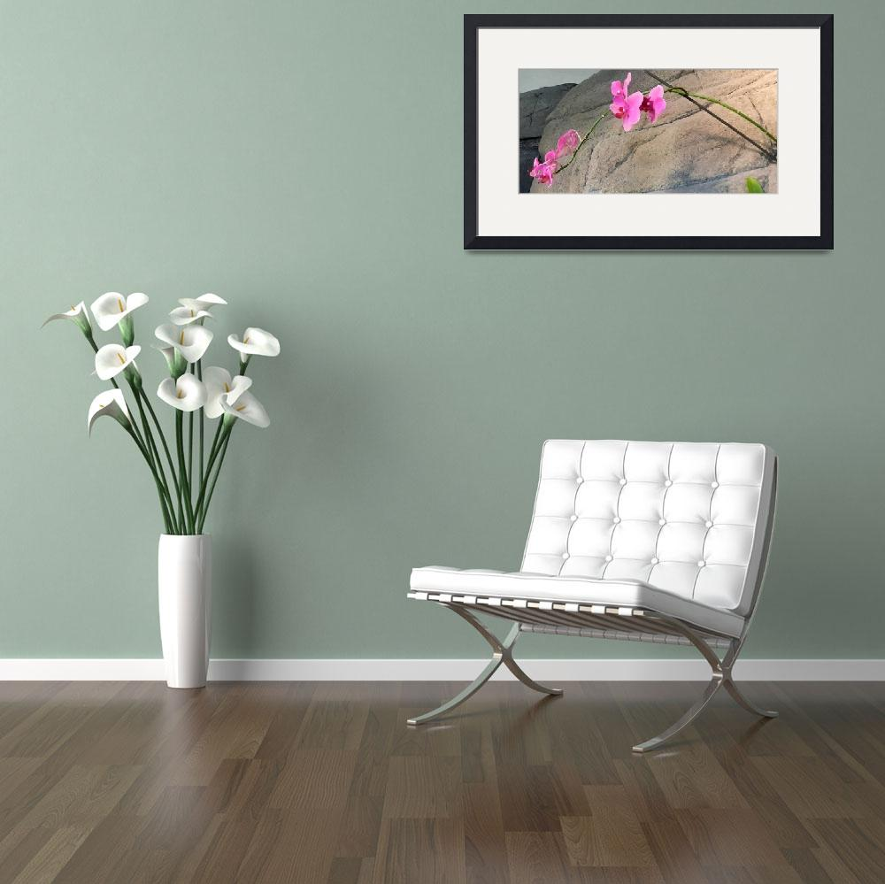 """pink orchid landscape brushstrokes&quot  by lizmix"