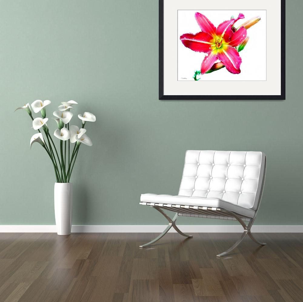 """""""Day Lily No. Two&quot  (2007) by MBush1us"""