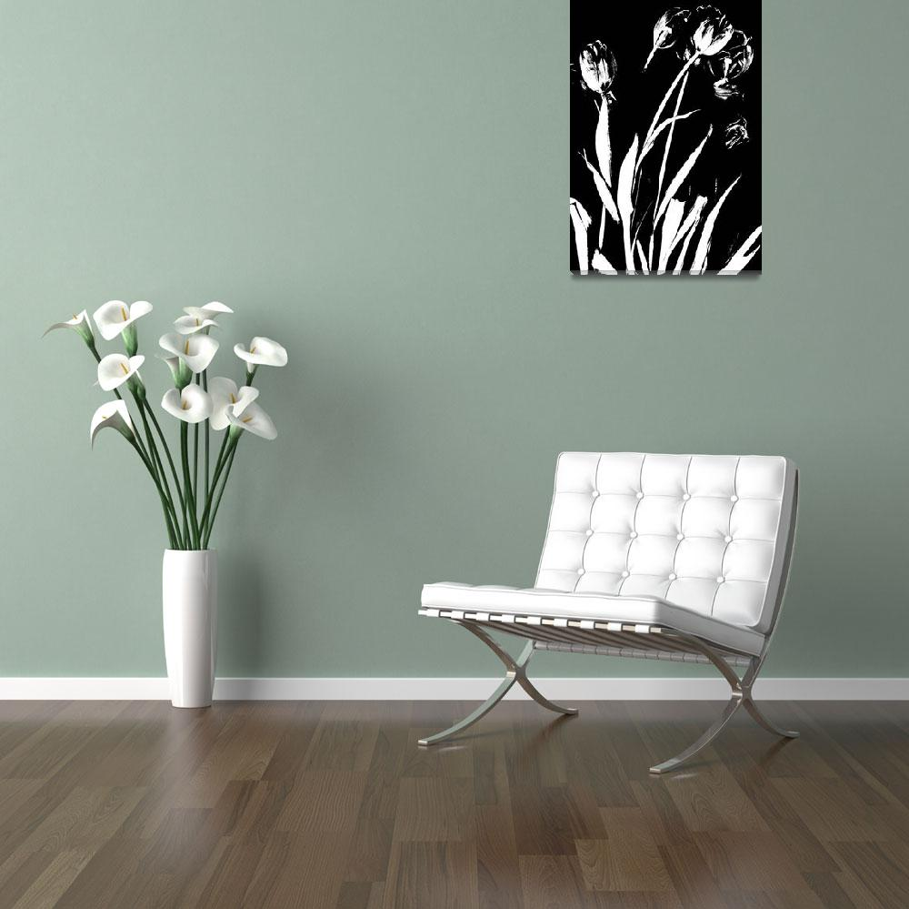 """""""Black & White Tulips&quot  (2008) by LindaCavaney"""