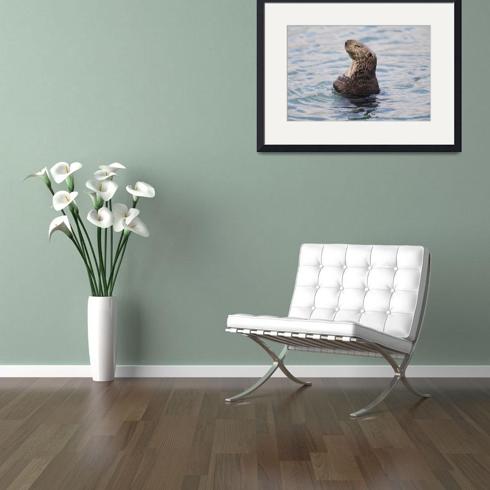 """""""Sea Otter With Arms Crossed Floats Upright In Prin&quot  by DesignPics"""