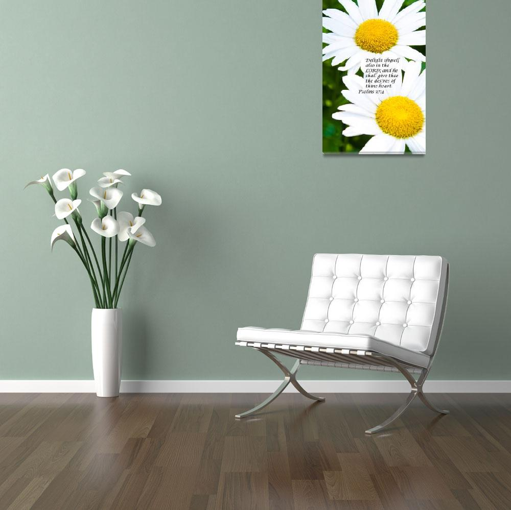 """""""Inspiring Daisies""""  (2011) by frogpatchphotography"""