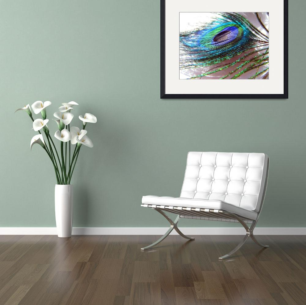 """""""Peacock Feather&quot  (2008) by ardentgarden"""