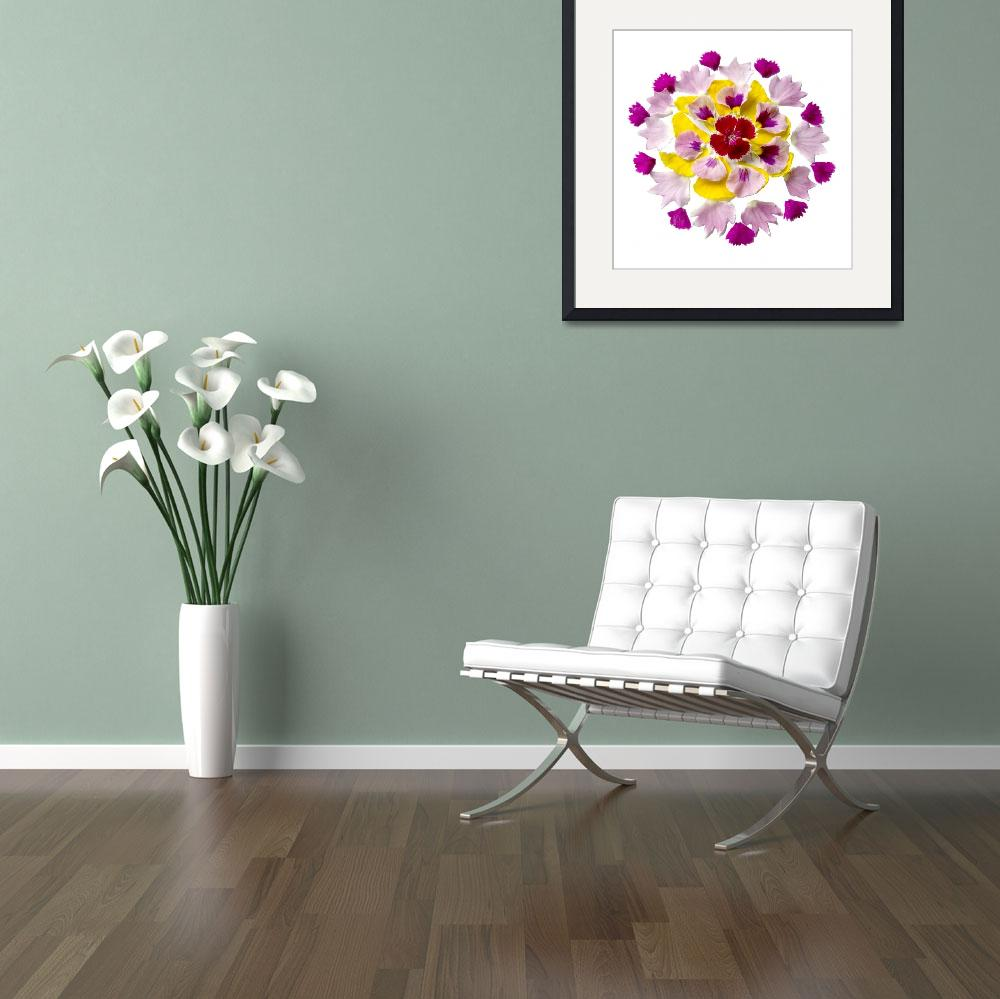 """""""Mandala Blessing of the Pansy and Dianthus""""  (2013) by healingwithart"""