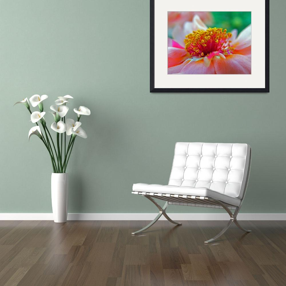 """""""Portulaca&quot  by justaddink"""