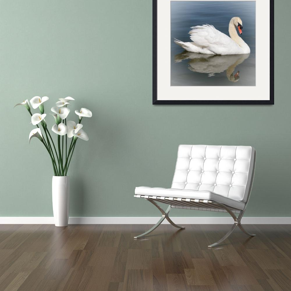 """Reflection of Swan with Vignette&quot  by Groecar"