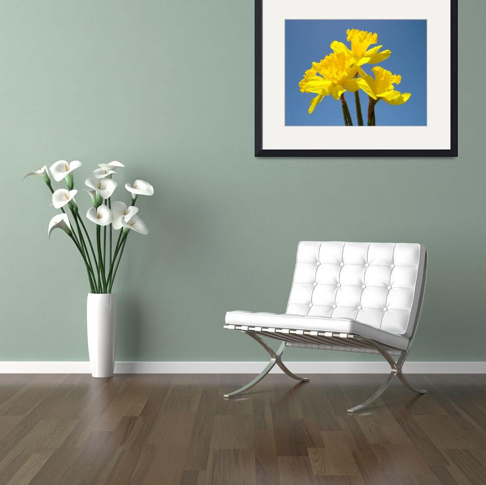 """""""Spring Art Prints Daffodils Flowers Canvas Framed&quot  (2010) by BasleeTroutman"""