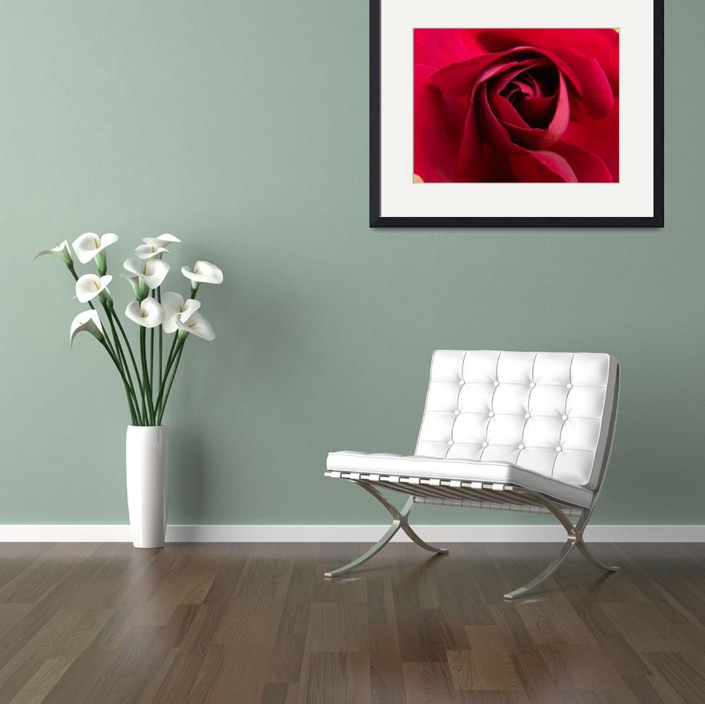 """""""Rose Middle&quot  (2012) by Dzines"""