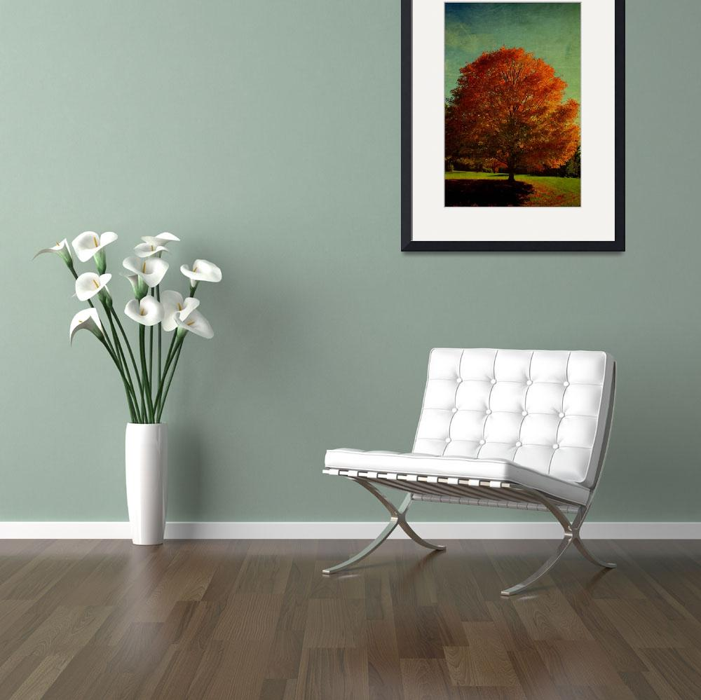 """""""October 21 AUTUMN TREES22-1&quot  by manymuses"""