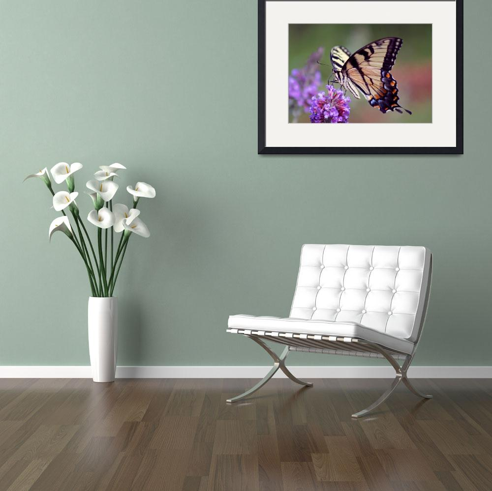 """Butterfly  Eastern Tiger Swallowtail&quot  (2012) by KsWorldArt"