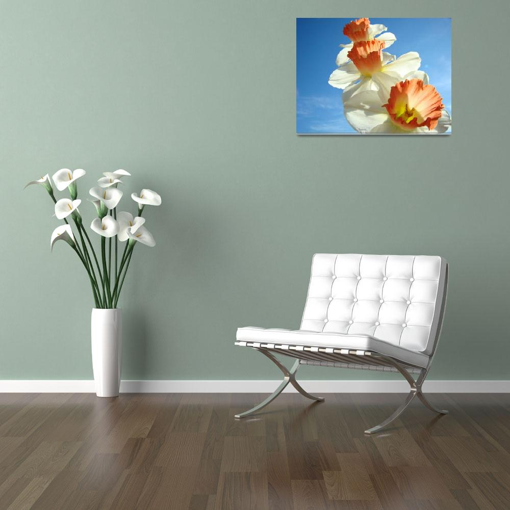 """Narcissus FLOWERS 2 Spring Flower Garden Art Print&quot  (2009) by BasleeTroutman"