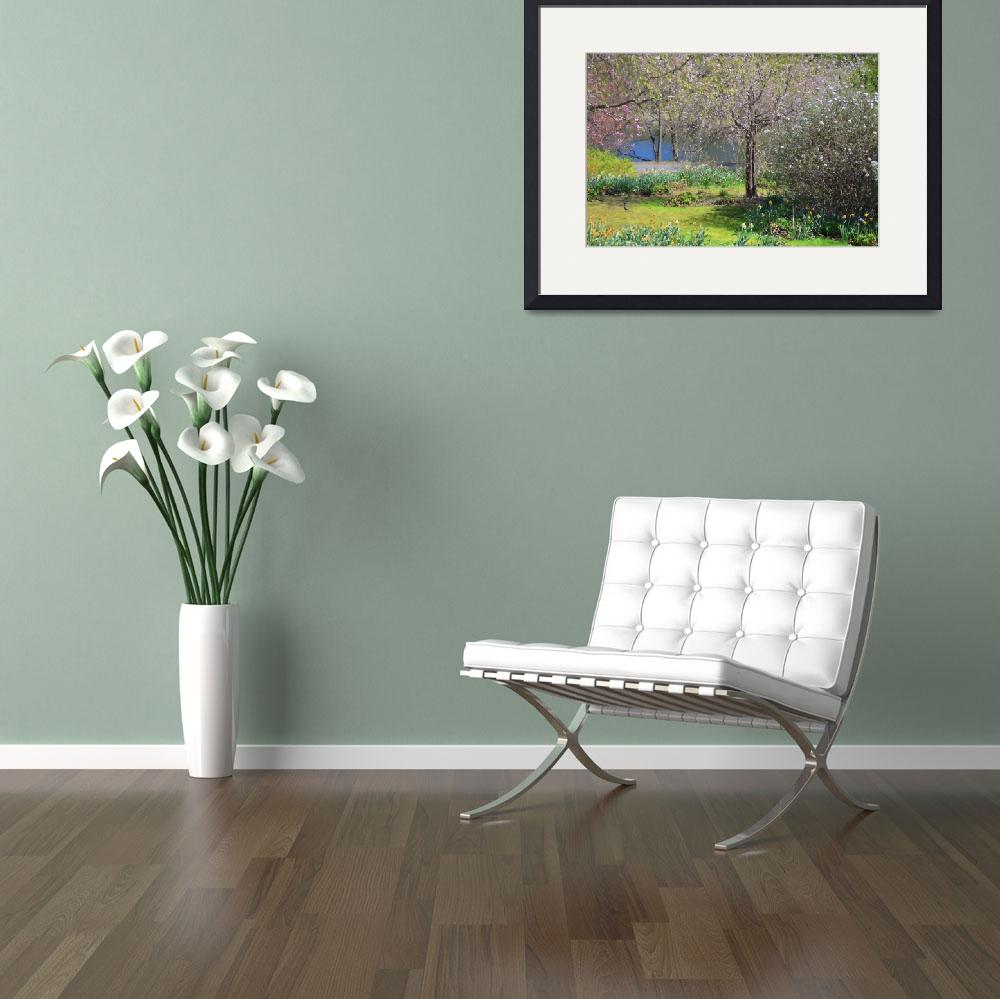 """""""Flowered trees in Spring by Lake""""  by judimage"""