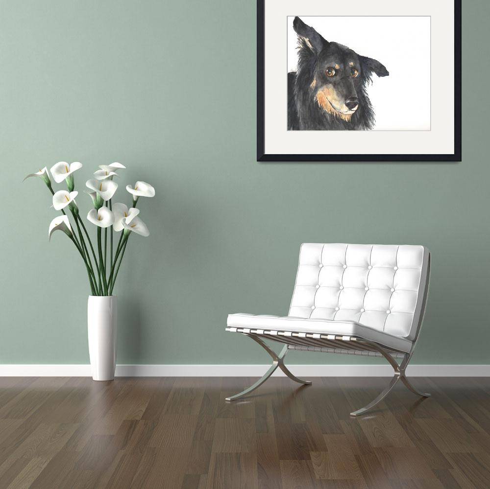 """Curious Collie Mix&quot  (2013) by Designomel"