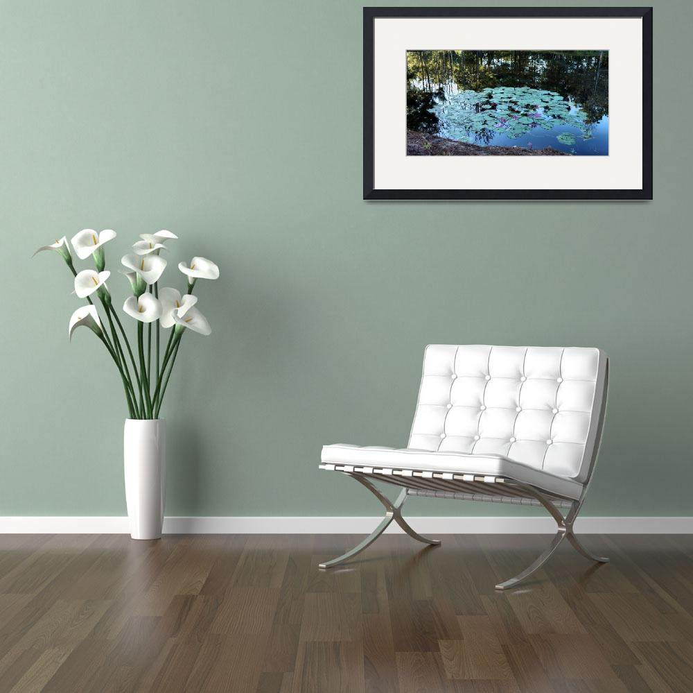 """""""Lilypad Pond&quot  (2010) by constellationphotography"""