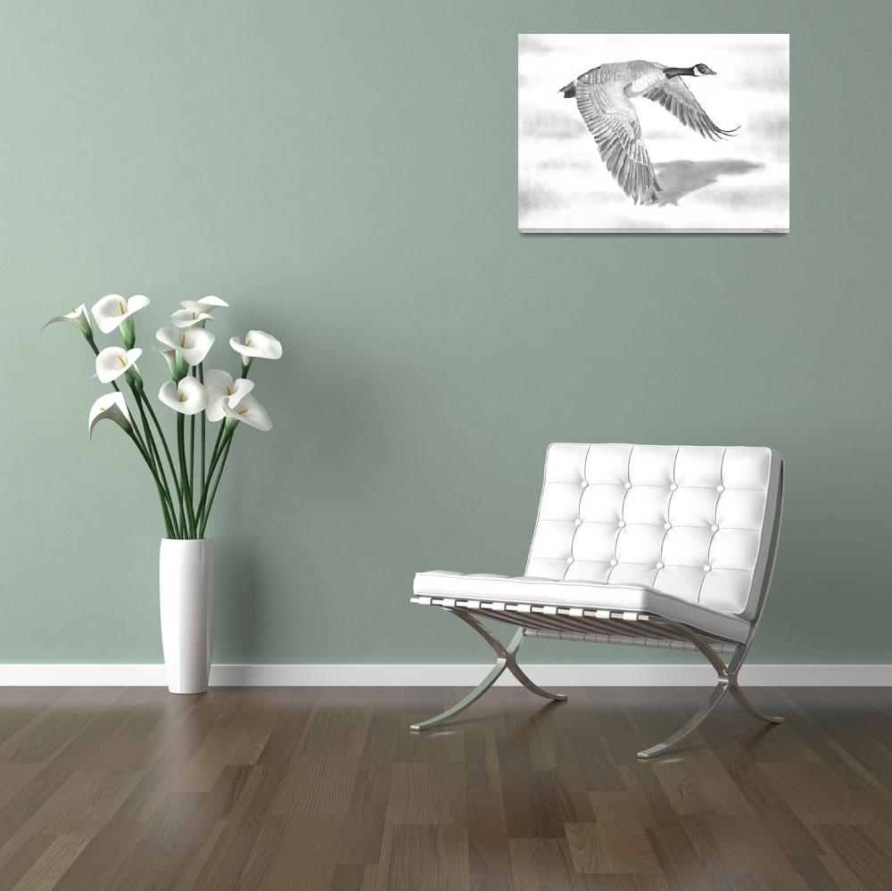 """""""""""Northern Bound"""" Canadian Goose in flight""""  (2010) by iLovePencils"""