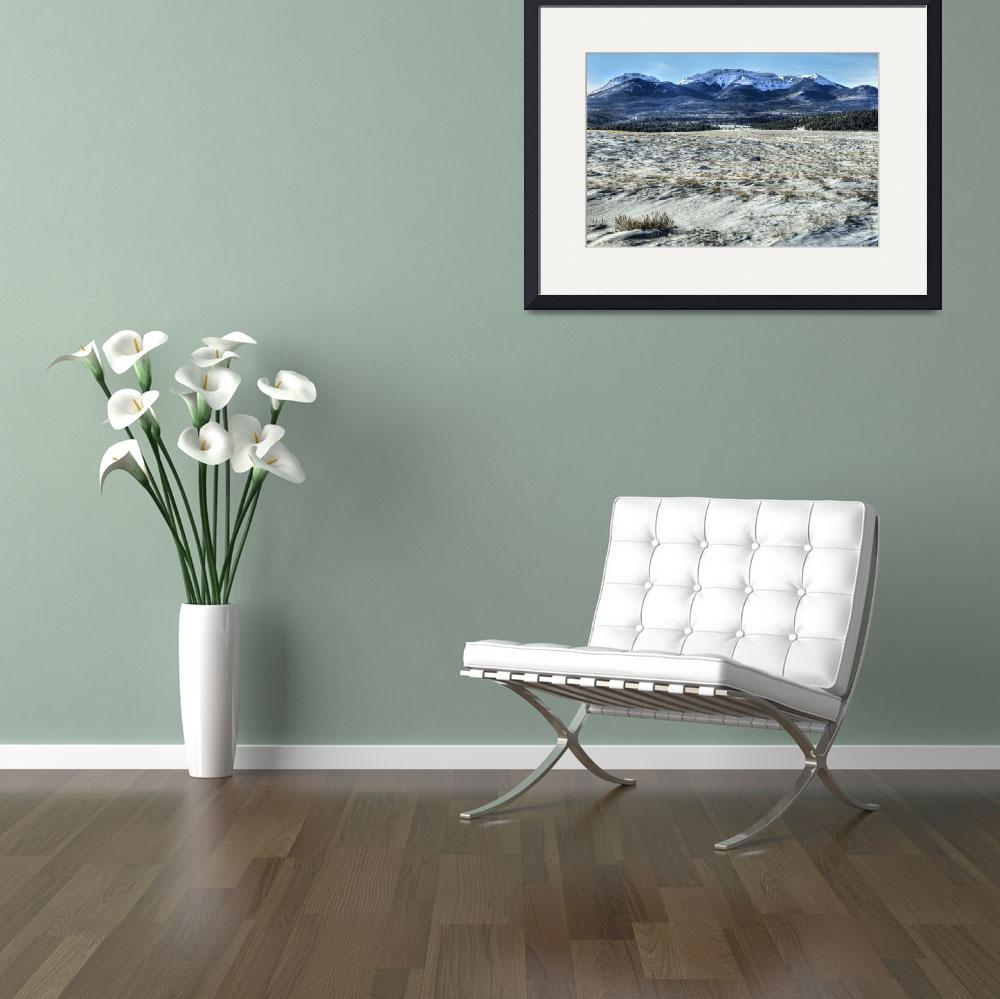 """""""Buffalo Peaks Plains&quot  (2011) by Gold41"""