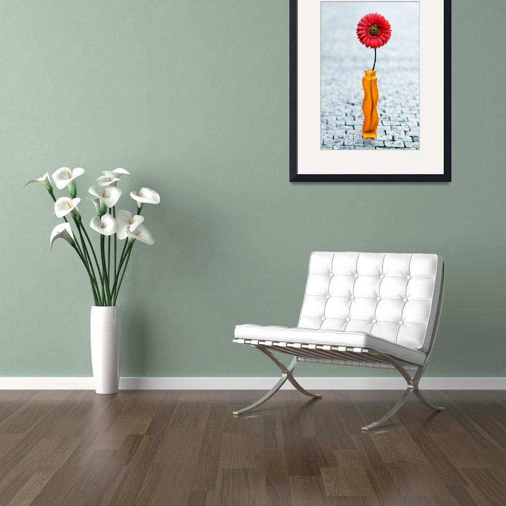 """""""red daisy in vase on street&quot  (2008) by JazzBoo"""