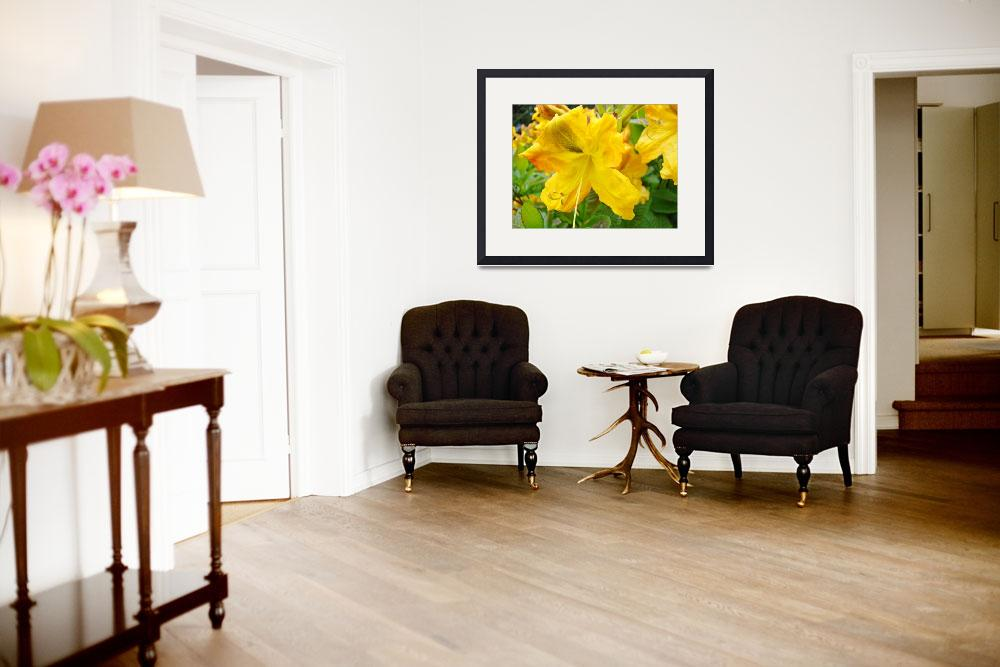 """Azaleas Art Print Yellow Azalea Flowers Rhodies&quot  (2009) by BasleeTroutman"