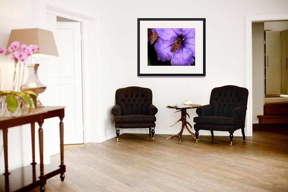"""""""Busy Bee&quot  (2007) by ImagesbyCecillePL"""