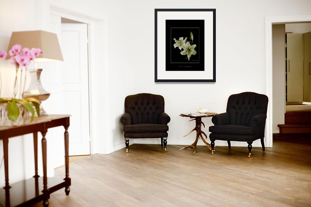 """""""Yellow Lilies on Black&quot  (2008) by DocPixel"""