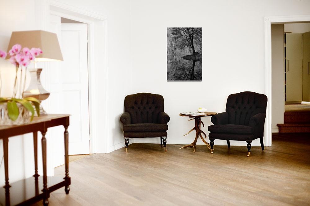 """Black & White Autumn Reflection&quot  (2010) by karolsstuff"