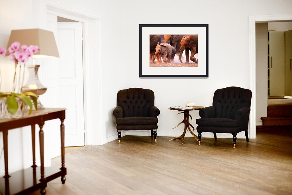 """""""Animals Africa Framed Photo Print&quot  by buddakats1"""