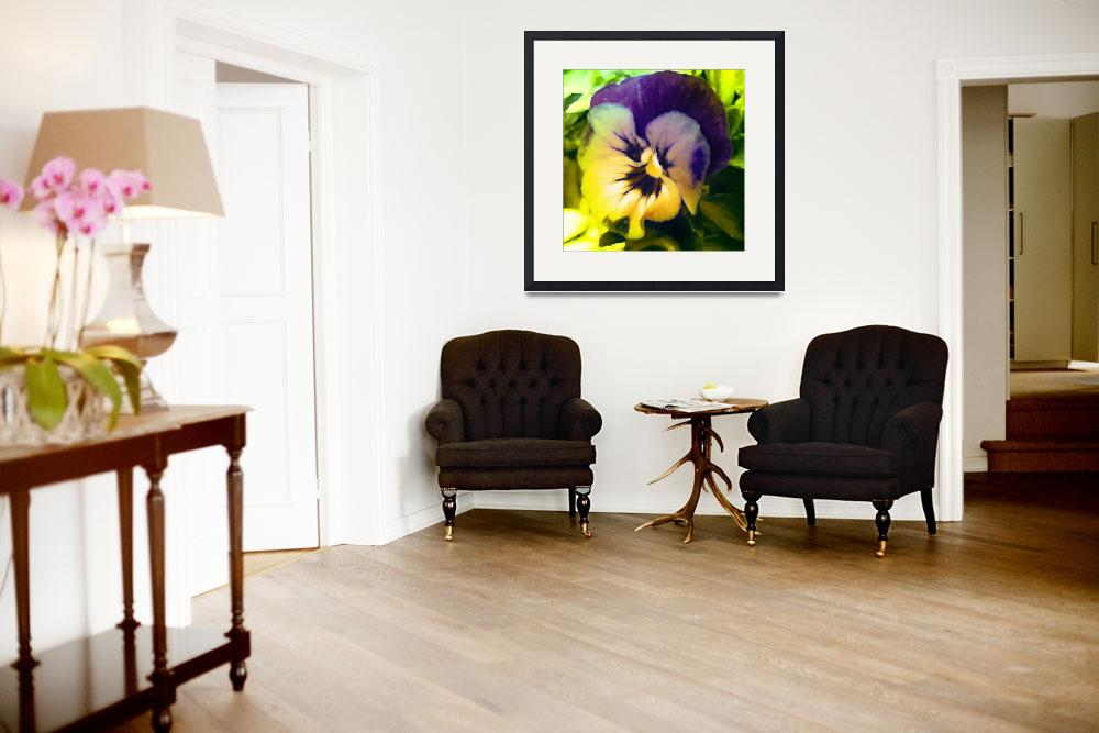 """""""Painted Pansy&quot  (2008) by katbesthorn"""