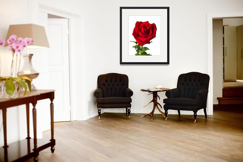 """""""Heart form red rose&quot  (2012) by nuttakit"""