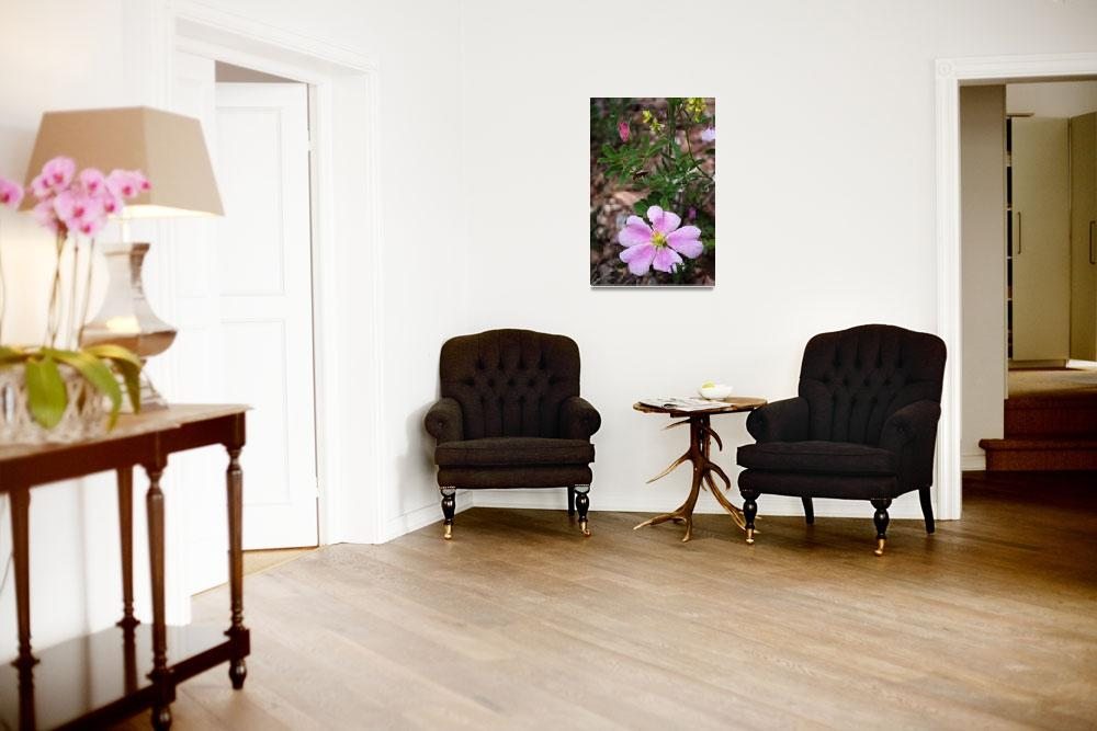 """bug on flowers&quot  by erinlanzendorfer"