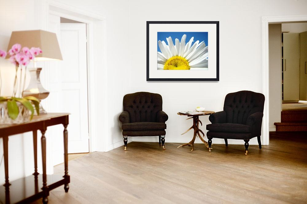 """""""Daisies art prints White Daisy Summer Floral&quot  (2010) by BasleeTroutman"""