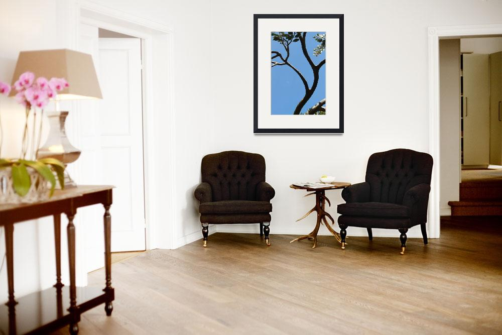 """""""Arched tree&quot  (2010) by easyfigure"""