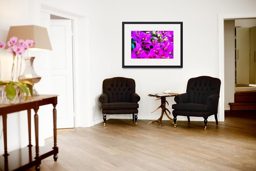 """""""Bougainvillea flowers in Italy two&quot  (2015) by flowersinabstract"""