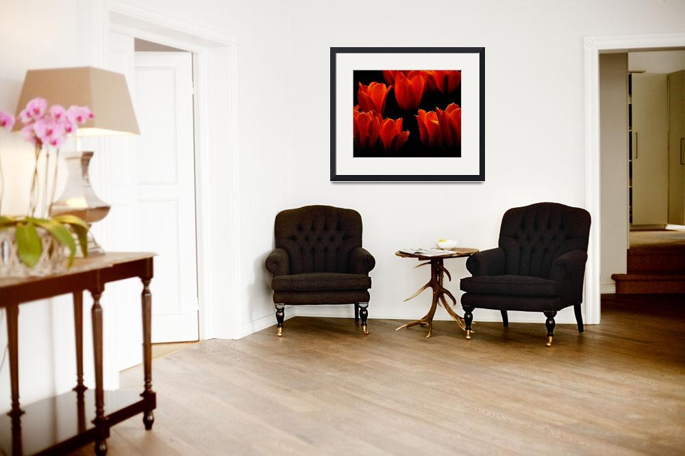 """""""Red Tulips&quot  (2014) by joanhan"""
