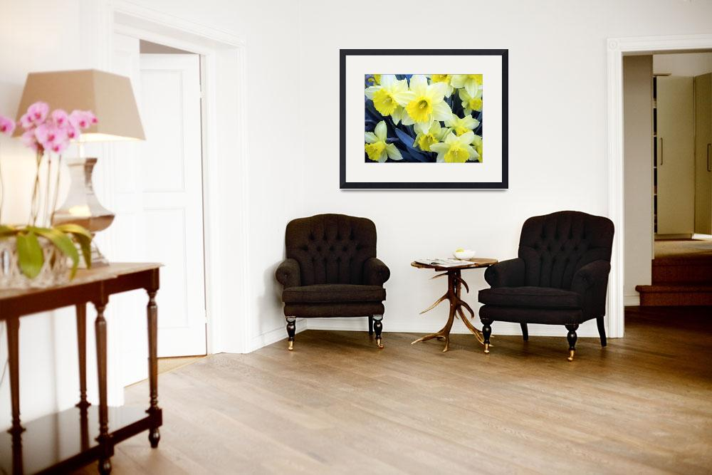 """""""Yellow Daffodils&quot  (2014) by johnscanvassprints"""
