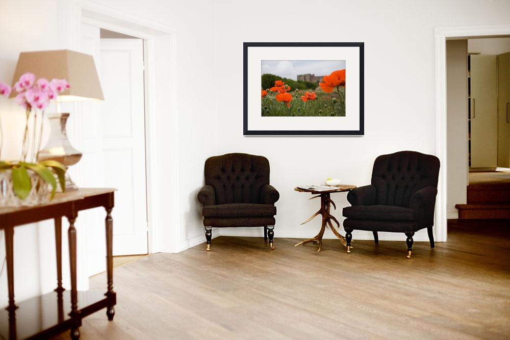 """""""Poppies and Castle&quot  (2009) by SueLeonard"""