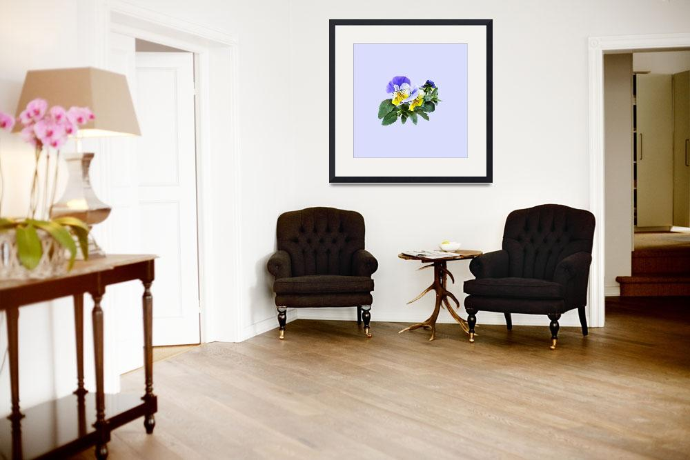 """""""Group of Yellow and Purple Pansies&quot  by susansartgallery"""
